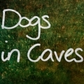 Dogs in Caves Gig Overview